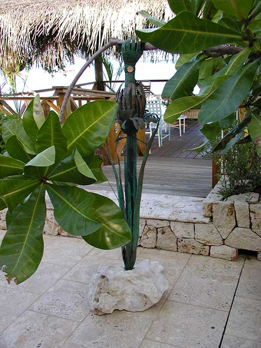 Garden Structures Design and Installation in Cayman Islands - Image9